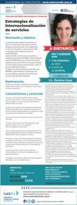 Estrategia de internacionalizaci�n de servicios