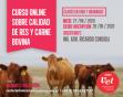 Curso online sobre Calidad de Res y Carne Bovina