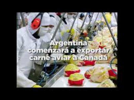 Argentina comenzar� a exportar carne aviar a Canad�