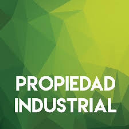 Proyecto de despapelización del INPI