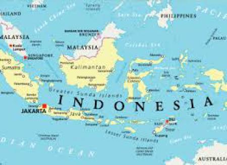 Nuevos productos de origen vegetal podr�n ingresar a Indonesia