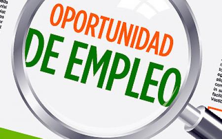 Oportunidad Laboral en Comercio Exterior