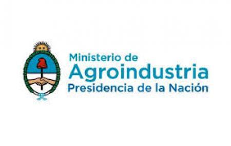 Nueva herramienta para la Agroindustria