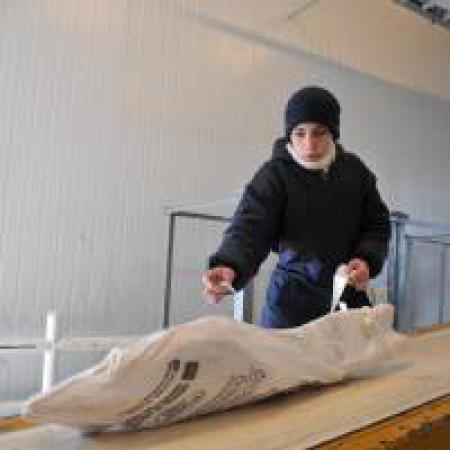 Apertura del mercado de Jap�n para la carne bovina y ovina de la Patagonia