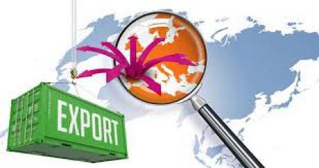 M�s cambios en Comercio Exterior