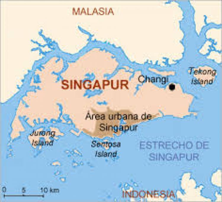 Accedé a los mercados más dinámicos de Asia y Oceanía, de manera rentable y eficiente, a través del Hub Logístico y comercial de Singapur
