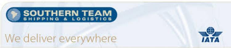 Southern Team: Una empresa que ofrece servicios logísticos integrales