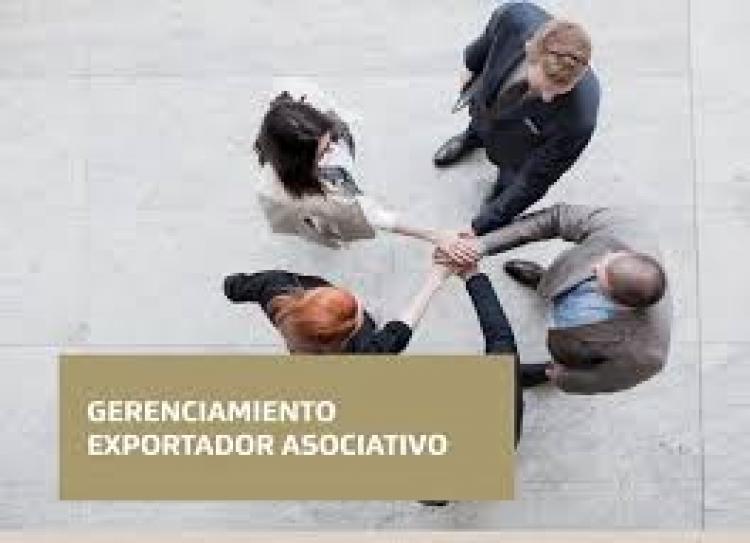 Programa Gerenciamiento Exportador Asociativo