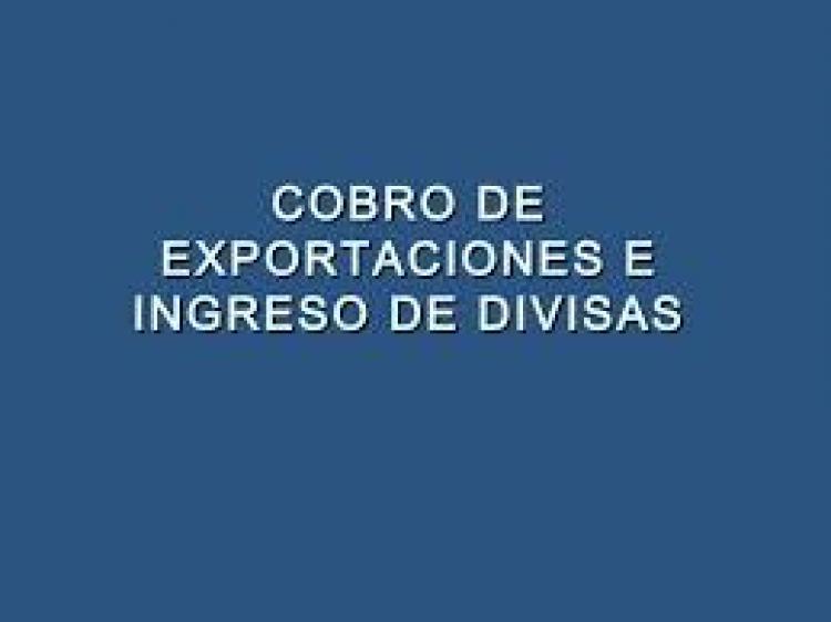 Vuelven a exigir el ingreso y negociaci�n de las divisas de exportaci�n para cobrar los reintegros