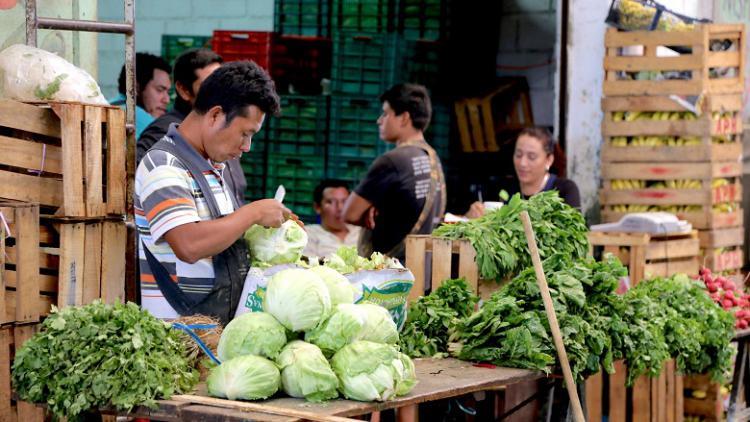 10 claves para el futuro de la alimentaci�n en Am�rica Latina
