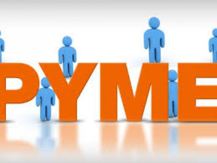 Registro MiPyME