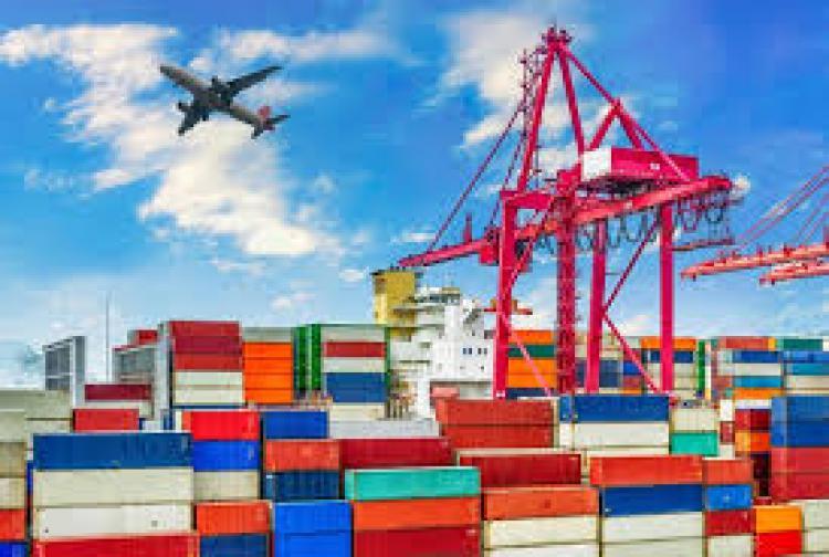 Se establece el detalle y el procedimiento para Autorizar Actividades de Producci�n y de Exportaci�n