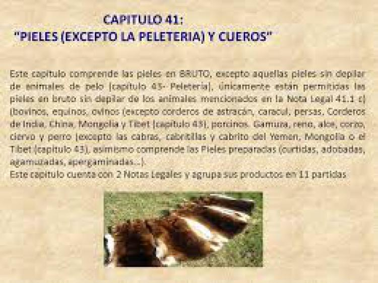 DCTO-2020-549-APN-PTE - Derecho de Exportaci�n.