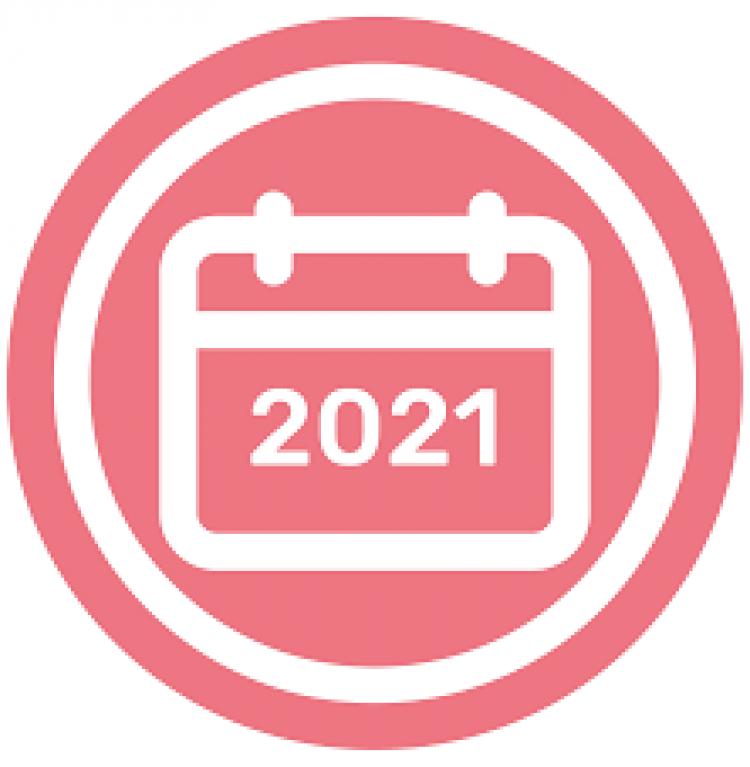 Instructivo para carga de Proyecciones Comex 2021