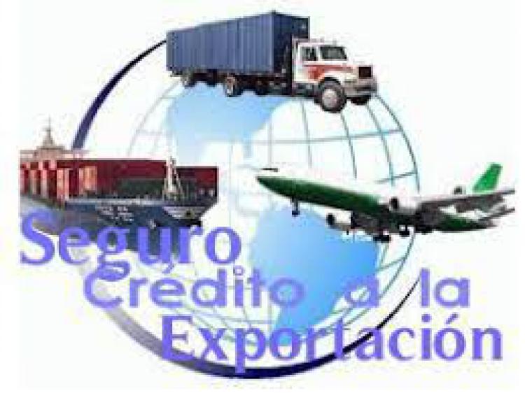 Seguro de Cr�dito: una herramienta clave para el comercio internacional desaprovechada en Argentina