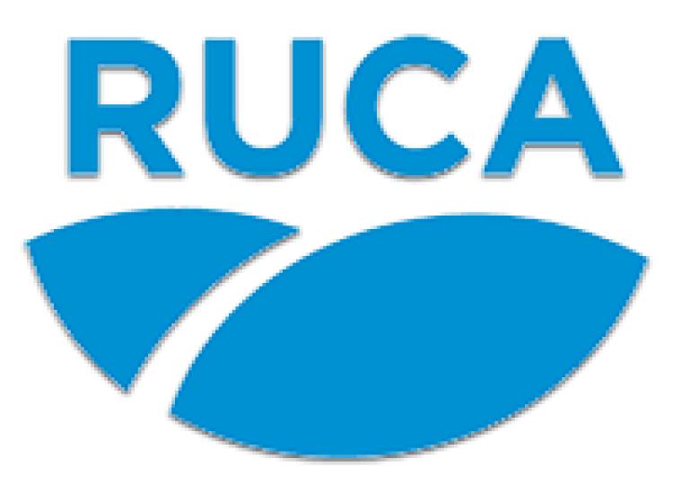 Se deber� cumplir toda la normativa cambiaria para seguir inscripto en el RUCA