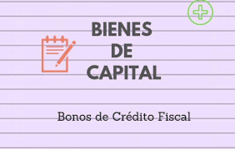Modificaciones en el Regimen de Incentivos para productores de Bienes de Capital