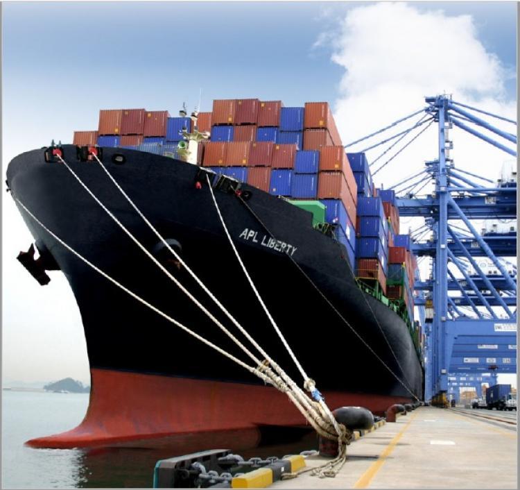 Los valores de los fletes marítimos tardarán por lo menos dos años en normalizarse